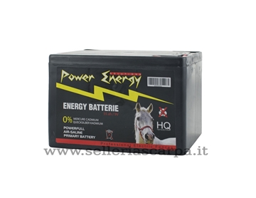 Immagine di BATTERIA POWER BATTERY 5000H POWER ENERGY