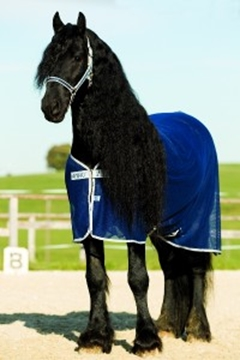 Immagine di COPERTA RETE AMIGO NET COOLER HORSEWARE
