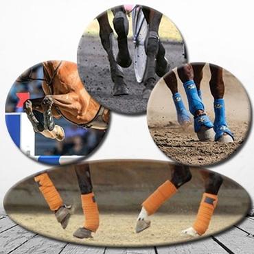 Immagine per la categoria Protezioni cavallo