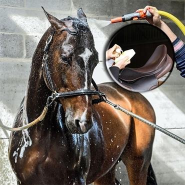 Immagine per la categoria Cura cavallo e cuoio
