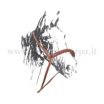 Immagine di CAMARRA MAREMMANA IN CUOIO UMBRIA EQUITAZIONE PE00120